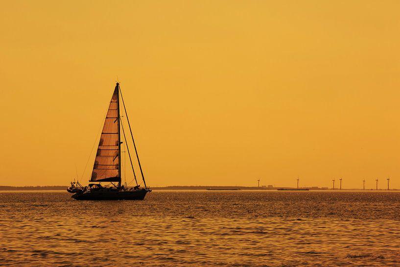 Un voilier sur la mer sur Frank Herrmann