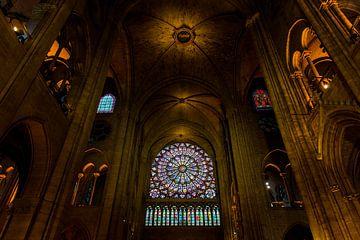 Notre-Dame Parijs - 2 sur Damien Franscoise