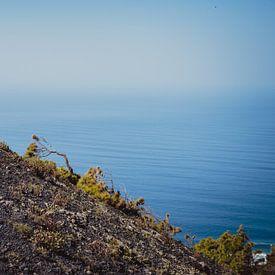 Landschap op en rond de vulkaan San Antonio (2) | La Palma van Rob van der Pijll