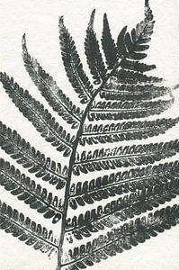 Tropisch blad van