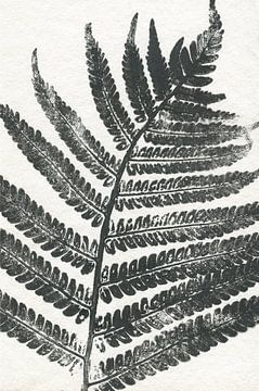 Tropisch blad sur
