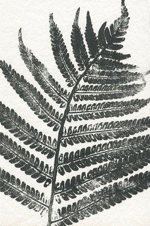 Tropisch blad sur Prachtige Prints