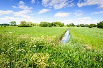 Holländischer Polder im Frühjahr von Ruud Morijn