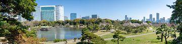 Hamarikyu Gardens in Tokyo van Mylène Amoureus