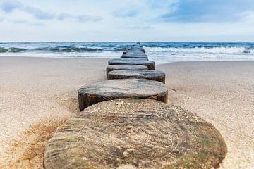 Kribben op het strand van de Oostzee van Gunter Kirsch