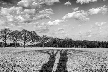 Schatten von Bäumen über Ackerland - schwarz-weiß von Karin de Jonge