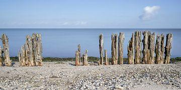Golfbreker palen aan Waddenkust van