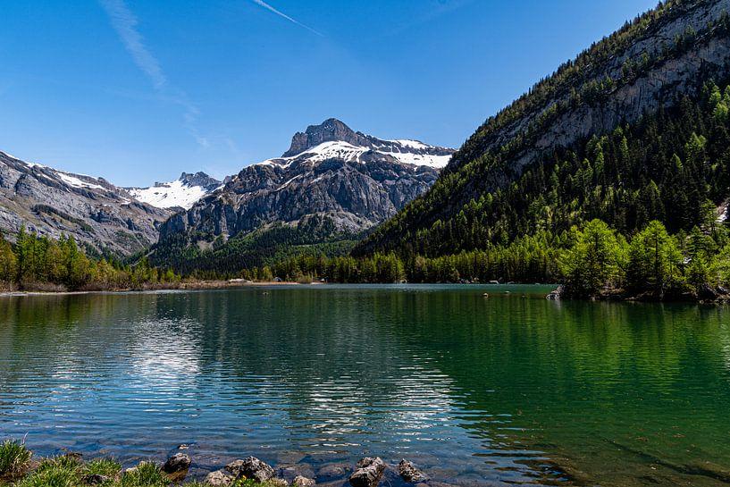 Lac de Derborance (1), Zwitserland van Ingrid Aanen