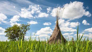 Traditionele rietsnijders schoven in het landschap van Fotografiecor .nl