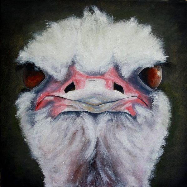 struisvogel van Andrea Meyer