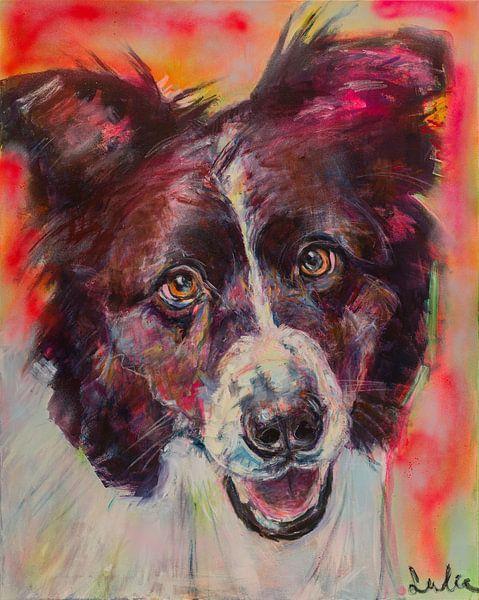 Schilderij van een portret van een hond Border Collie van Liesbeth Serlie