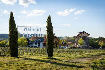 Gradierbau (Salinen) im Kurpark von Bad Dürkheim mit Blick auf die Michaelskapelle von Fabian Bracht