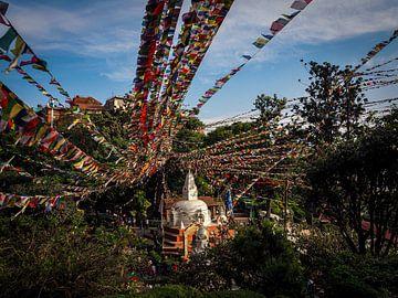 Festliches Nepal von Rik Pijnenburg