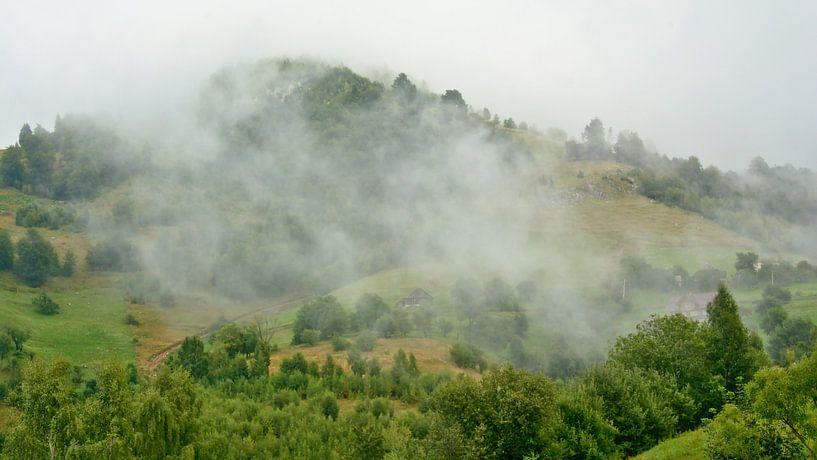 Mist in de bergen van Transylvanie van Kristof Lauwers