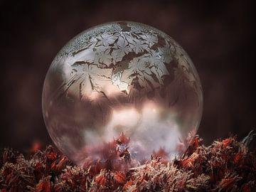 Bevroren zeepbel #1 van Lex Schulte