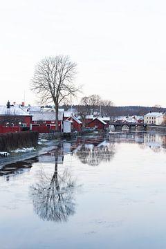 zweedse winter von maarten starink