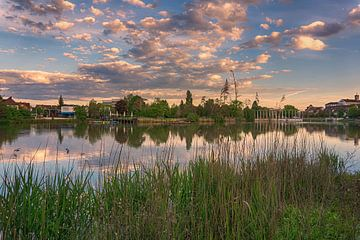 Het park van Böblingen in de ochtend van Andreas Marquardt