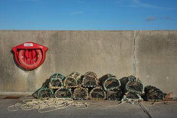 Visfuiken op de pier van Bo Scheeringa Photography