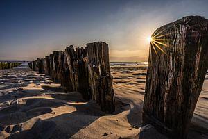 Strandpalen van Jolanda Bosselaar