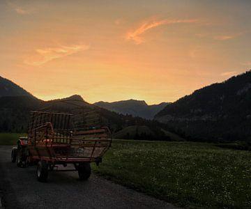 Het boerenleven in Oostenrijk van Lucas van Gemert