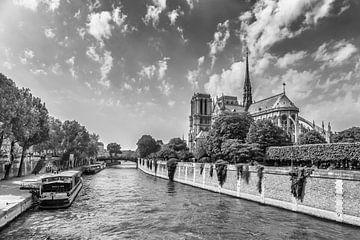 Cathédrale de PARIS Notre-Dame | Monochrome sur Melanie Viola