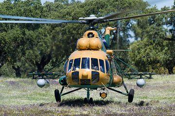 Mi-17 de l'armée de l'air hongroise Hip sur Dirk Jan de Ridder