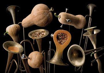 Butternut trumpet von Olaf Bruhn