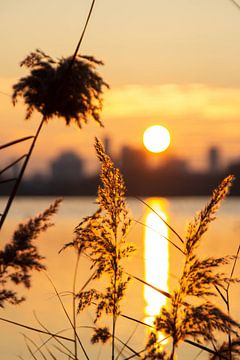 Sonnenuntergang Skyline Rotterdam von Deborah de Meijer