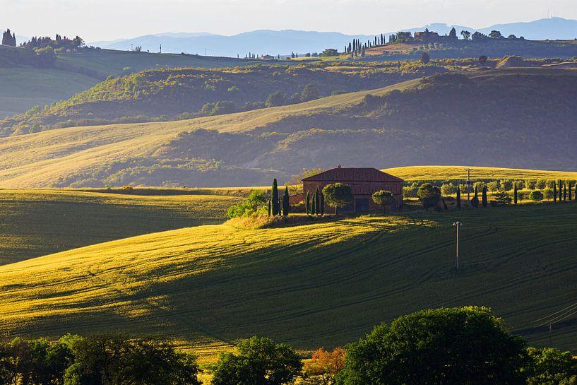 Ochtendlicht in Val d'Orcia, Toscane, Italië van Henk Meijer Photography