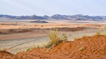 Landschap in Namibië van Achim Prill
