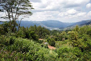Wunderschöner Blick auf das El Nicho-Tal, ein Gebiet des Nationalparks Topes de Collantes, Kuba. von Tjeerd Kruse