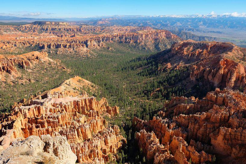Bryce Canyon, Utah von Colin Bax