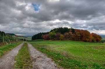 schilderijachtige herfst - Sauerland - Duitsland von Jeroen(JAC) de Jong