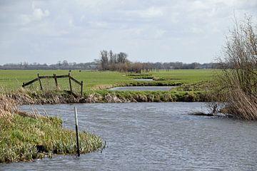 Polderlandschap van natuurgebied Willeskop in de provincie Utrecht van Robin Verhoef