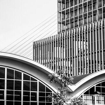 Rotterdam Kopf von Süd von Karin vanBijleveltFotografie