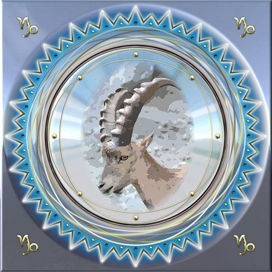 Sterrenbeeld Steenbok van Shirley Hoekstra