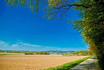 Landscape around Borgholzhausen (2) van
