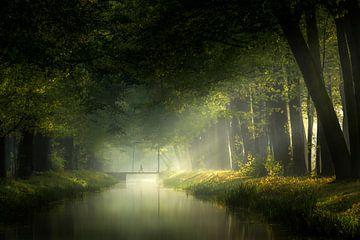 Der Morgen ist angebrochen von Kees van Dongen