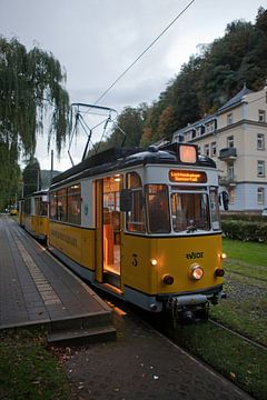 "Kirnitzschtalbahn - eindpunt ""Bad Schandau"" van t.ART"