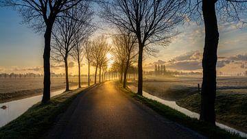 Op weg naar de zon