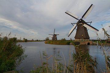 Moulins à vent à Kinderdijk sur tiny brok