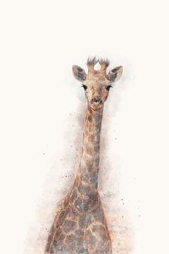 """""""Portret van een jonge giraffe"""" - Photography & Art van - GreenGraffy -"""