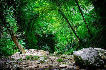 Flusslauf Italien von Branca Verheul