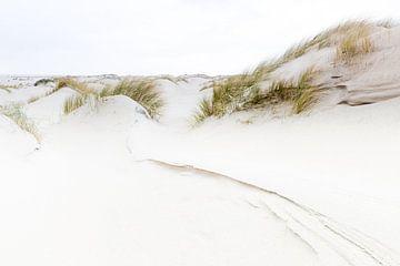 Dünen von Texel von Judith Borremans