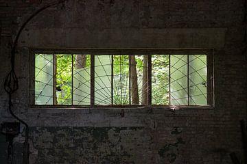 Uitkijk in de tuin von Sander van Leusden