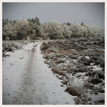 Winter landschap von Kuba Bartyński