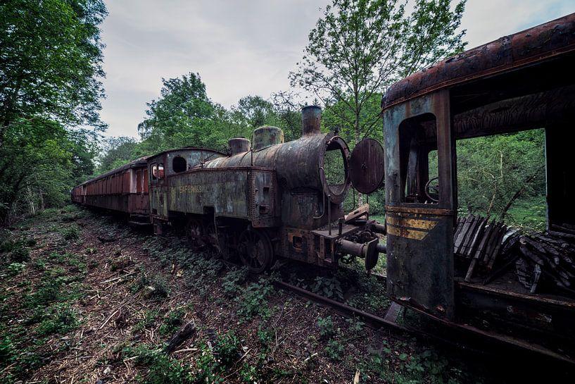 Verlassener Urbex-Dampfzug im Wald von Steven Dijkshoorn