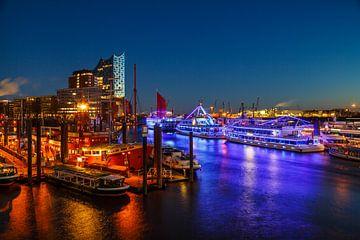 De havenlichten van Hamburg van Ursula Reins