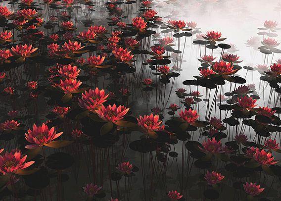 Waterlelies in de dauw