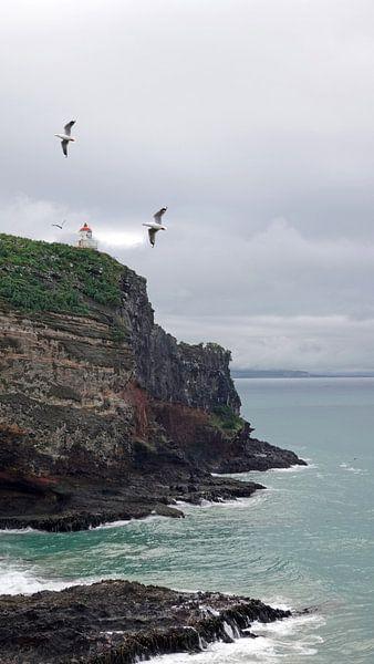 Vuurtoren van Taiaroa Head, Otago Peninsula Nieuw Zeeland van Aagje de Jong